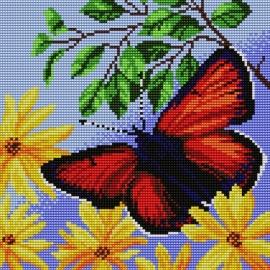 Motyl (No 5266)