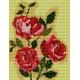 Róża (No 5050)