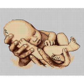 Dziecko - narodziny (No 7288)