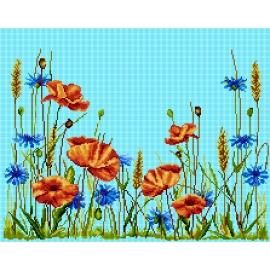Łąka - polne kwiaty (No 7280)