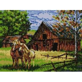 Haft krzyżykowy - do wyboru: kanwa z nadrukiem, nici Ariadna/DMC, wzór graficzny - Konie (No 5068)