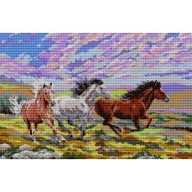 Haft krzyżykowy - do wyboru: kanwa z nadrukiem, nici Ariadna/DMC, wzór graficzny - Galopujące konie (No 5079)