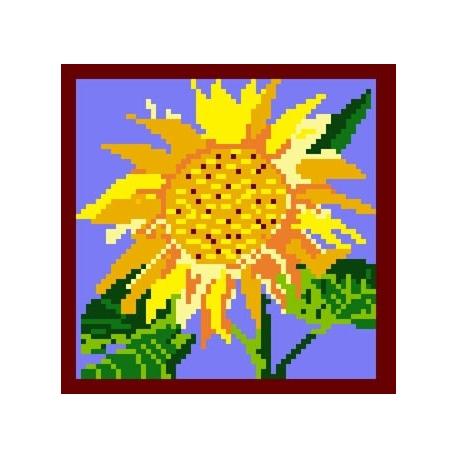 Słonecznik (No 109)