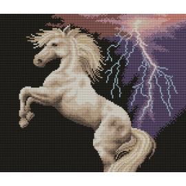 Haft krzyżykowy - do wyboru: kanwa z nadrukiem, nici Ariadna/DMC, wzór graficzny - Koń podczas burzy (No 7023)