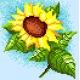 Słonecznik (No 5235)