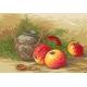 Martwa natura z jabłkami (No 94020)