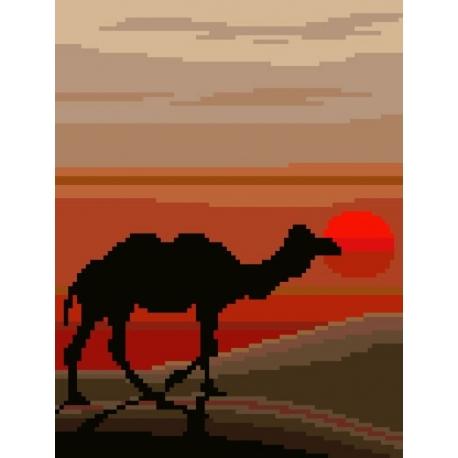 Sahara (No 5144)