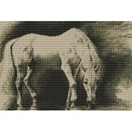 Haft krzyżykowy - do wyboru: kanwa z nadrukiem, nici Ariadna/DMC, wzór graficzny - Biały koń (No 94042)