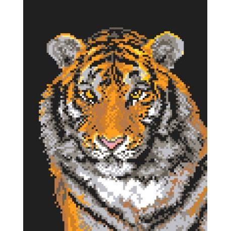 Tygrys (No 9444)