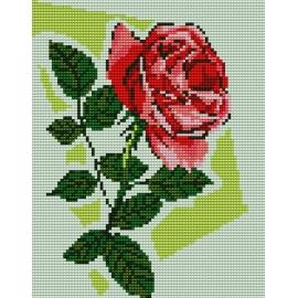 Haft krzyżykowy - do wyboru: kanwa z nadrukiem, nici Ariadna/DMC, wzór graficzny - Róża (No 5101)