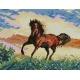 Haft krzyżykowy - do wyboru: kanwa z nadrukiem, nici Ariadna/DMC, wzór graficzny - Koń na prerii (No 5176)