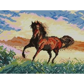 Koń na prerii (No 5176)