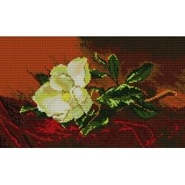 Magnolia (No 5153)