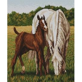 Haft krzyżykowy - do wyboru: kanwa z nadrukiem, nici Ariadna/DMC, wzór graficzny - Konie wg A. Songin (No 94062)