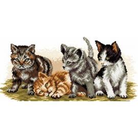 Kocie rodzeństwo (No 94112)