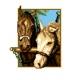 Haft krzyżykowy - do wyboru: kanwa z nadrukiem, nici Ariadna/DMC, wzór graficzny - Konie (No 5817)