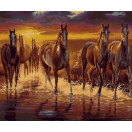 Zachód słońca - konie (No 7265)