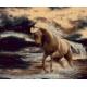 Koń w wodzie (No 7273)