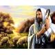 Haft krzyżykowy - do wyboru: kanwa z nadrukiem, nici Ariadna/DMC, wzór graficzny - Jezus Chrystus z Owieczkami (No 7277)
