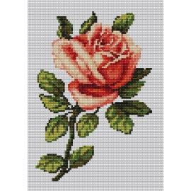Haft krzyżykowy - do wyboru: kanwa z nadrukiem, nici Ariadna/DMC, wzór graficzny - Róża (No 94620)