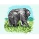 Afryka - słoń (No 5328)