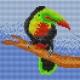 Haft krzyżykowy - do wyboru: kanwa z nadrukiem, nici Ariadna/DMC, wzór graficzny - Tukan (No 5527)