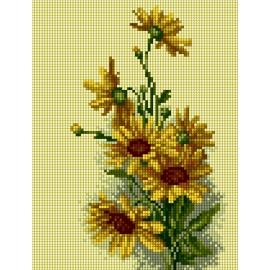 Kwiaty polne - słoneczniki (No 5864)