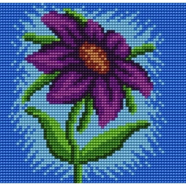 Kwiatek (No 5572)