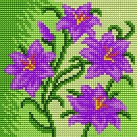 Kwiatki (No 5589)