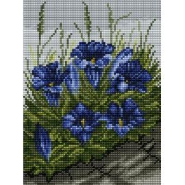 Kwiaty (No 5417)