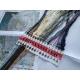 Haft krzyżykowy - Tygrys - zestaw do haftu na gładkiej kanwie