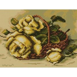 Róże w koszyku (No 5436)