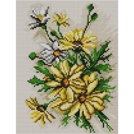 Haft krzyżykowy - do wyboru: kanwa z nadrukiem, nici Ariadna/DMC, wzór graficzny - Polne kwiaty (No 5462)