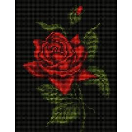 Haft krzyżykowy - do wyboru: kanwa z nadrukiem, nici Ariadna/DMC, wzór graficzny - Róża (No 5437)
