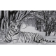 Haft krzyżykowy - do wyboru: kanwa z nadrukiem, nici Ariadna/DMC, wzór graficzny - Biały tygrys (No 7166) VI