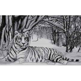Haft krzyżykowy - do wyboru: kanwa z nadrukiem, nici Ariadna/DMC, wzór graficzny - Biały tygrys (No 7166)